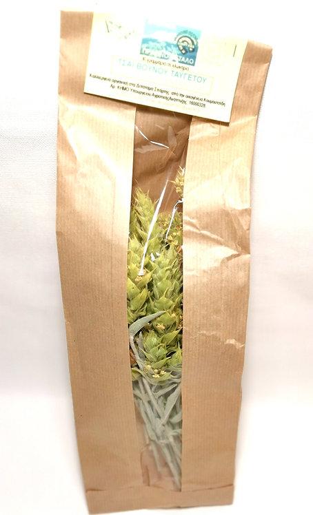 Mountain tea from Taygetos