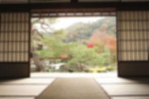 View of Meditation Garden_edited_edited.jpg