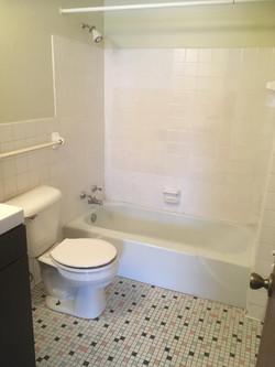 5 - toilet n tub