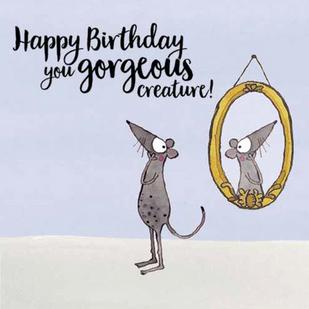 K178 - Happy birthday you gorgeous creat