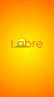 Labre Splash.png
