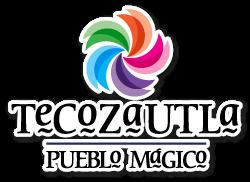 logo_tecozautla_pueblo_magico.png