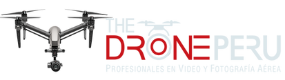 LOGO THEDRONE BLANCO.png