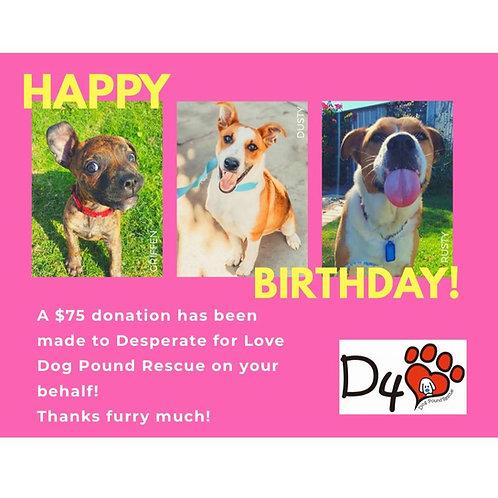 $75 Birthday Donation Gift