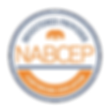NABCEP Registered Provider_Continuing Ed