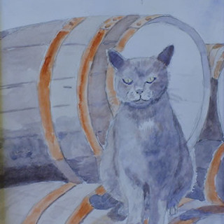 Cat On Barrels