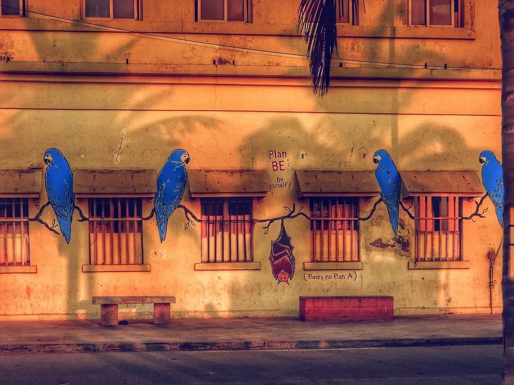 Pondicherry, wall mural, wall painting, street art