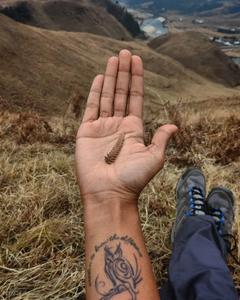 wrist tattoo, wisdom, trek, hike, Arunachal Pradesh, northeast India