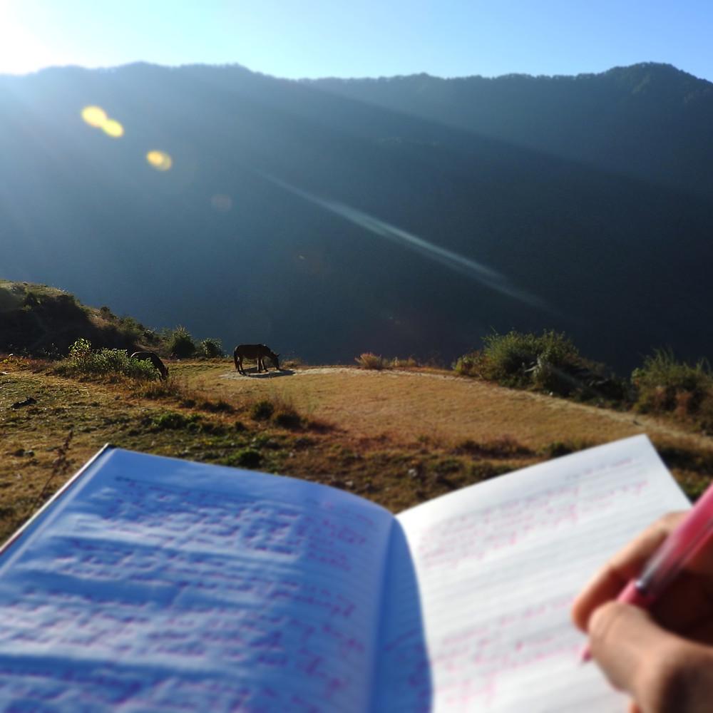 writing; journaling; horse; mountain; north India; Himalayas
