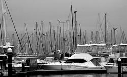 Masts Of Plenty