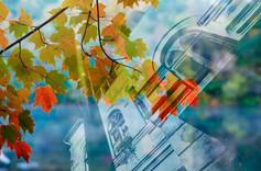 Kuldiga_Autumn_13.jpg