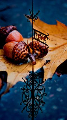 Kuldiga_Autumn_16.jpg