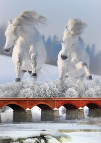 Архитектура и лошади