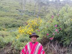 Yatiri Aurelio Ortiz Huaricallo - Kallawaya