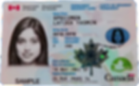 A specimen Canadian Permanent Resident Card