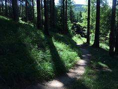 MTB Czech Republic - Jizera Mountains -