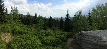 Bicycle Europe - Jizera Mountains - Dam