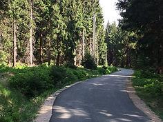 Mountain biking Czech Republic - Jizera