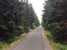 Biking trips in Europe - Jizera Mountain