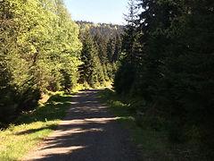 Czech Republic tours - Jizera Mountains