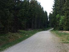 Mountain bike Jizera Mountains - Jizersk