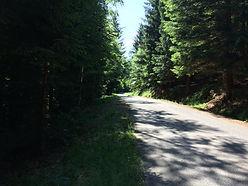 Central europe Tours - Jizera Mountains