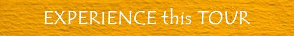 Experience_Orange white.jpg