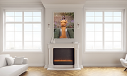 1-image-fireplace.png