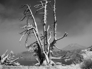 More Crater Lake Infrared