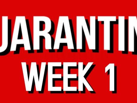 Quarantine Journal - Week 1