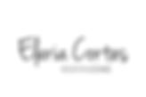 ec_logo (2).png