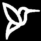 Icon-White-01.png