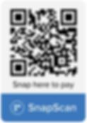 SnapCode_XmGn1LgL.png