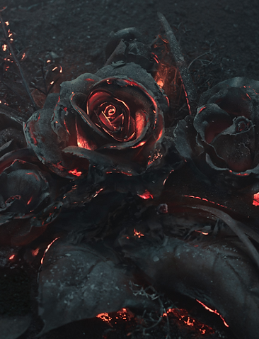 burning rose.png