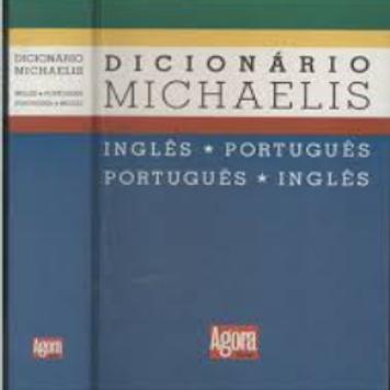Dicionário Usado Michaelis Ingles Português Agora  0385