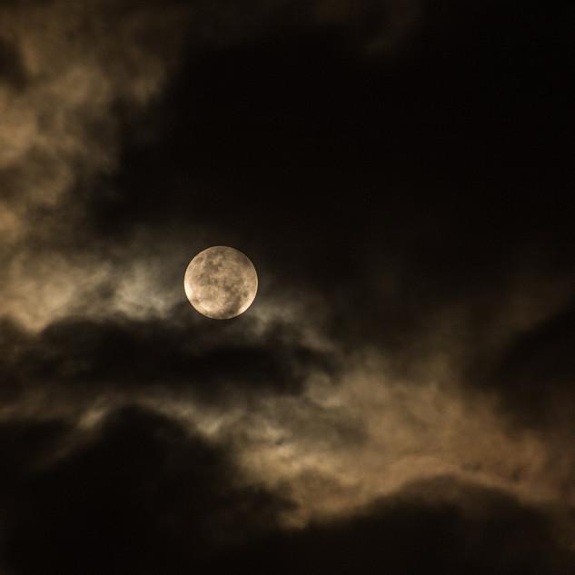 Dark sky maanwandelen