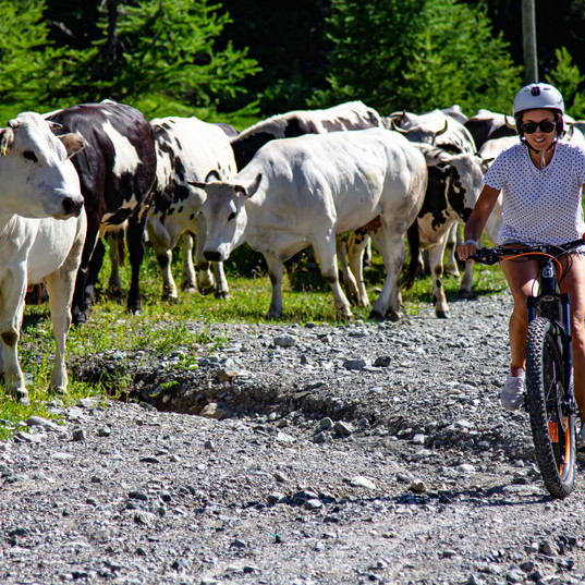 Montain Bike a Claviere