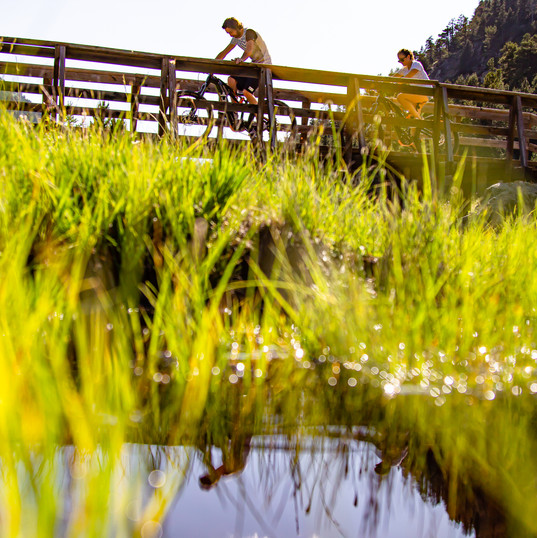 Passeggiate in Montain Bike a Claviere