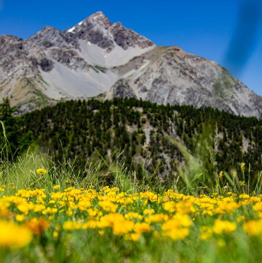 Montagne a Claviere