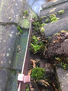 Gutter Cleaning & Replacement