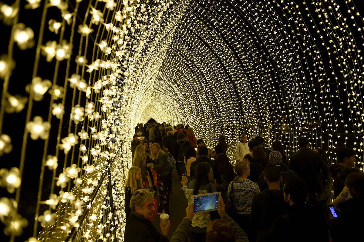 vivid-sidney-australia-light-festival-2016-06012016-3
