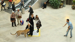 dd9ca-national_geographic_augmentedreality