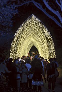 vivid-sydney-cathedral-of-light-royal-botanic-gard11