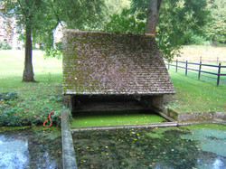 Château avec cave à champignons