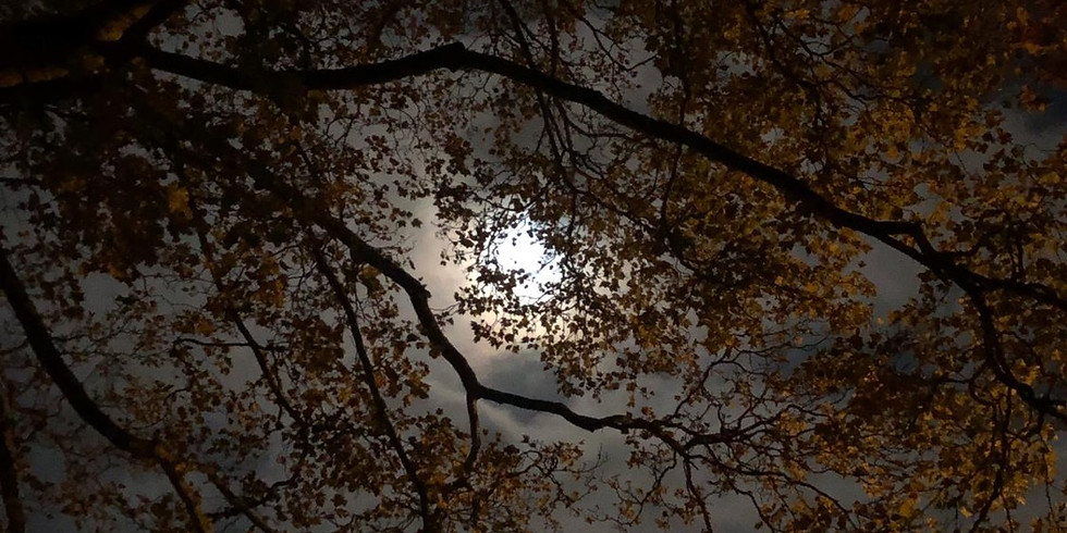 Full Worm Moon Celebration