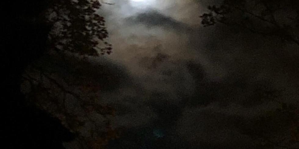 Blue Moon Celebration
