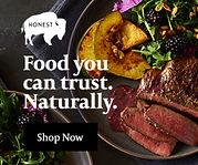 the honest bison.jpeg