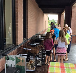 Mobile adoptions for homeless dogs and cats Haven of the Ozarks Animals Sanctuary