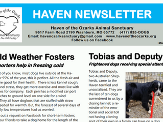 Haven Happenings: March 2021 Newsletter