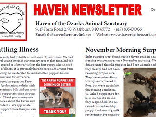 Haven Happenings: December 2018 Newsletter